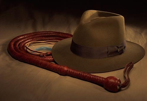Bullwhip_andGary-Stewart-_IJ_hat